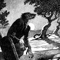 On Werewolves
